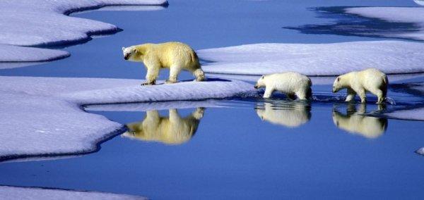 EU sets tougher climate target