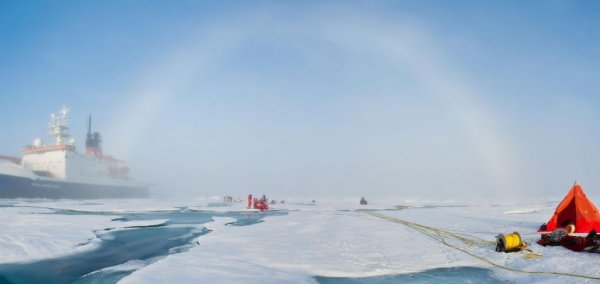 Arctic ice is melting faster than ever before