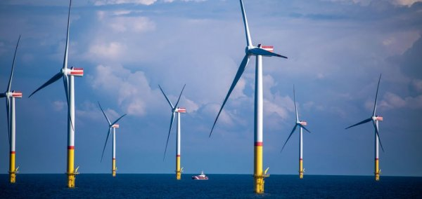Almost half of electricity consumption met by green energy